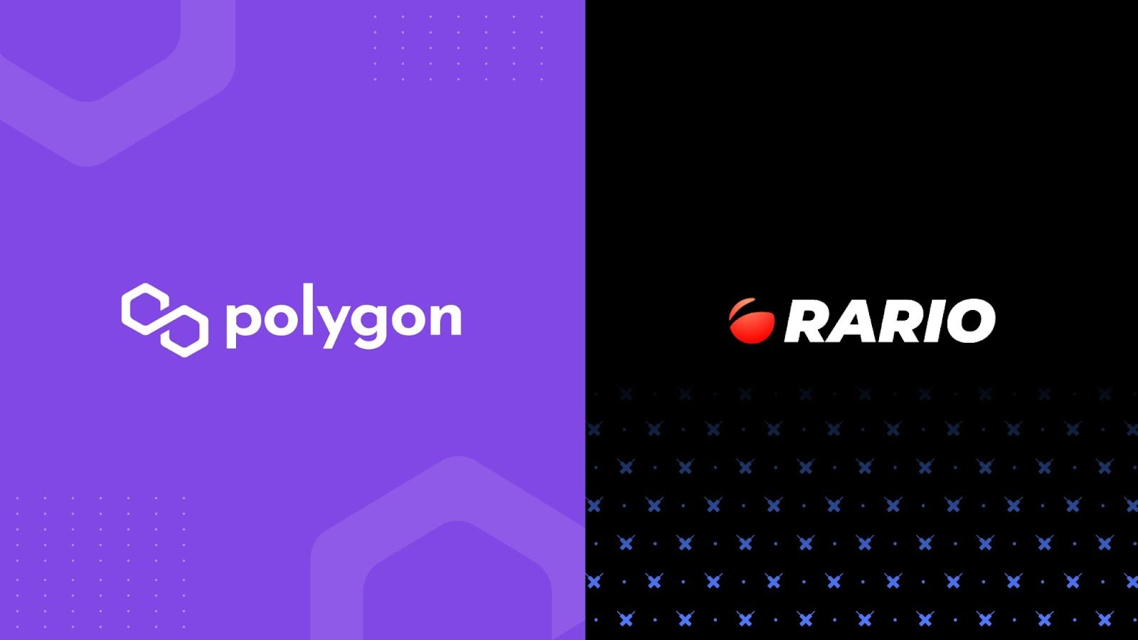 Rario Debuts on Polygon With Officially Licensed Cricket NFTs